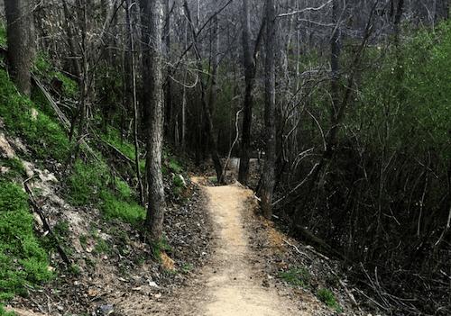 GUTS Gardendale Urban Trail System