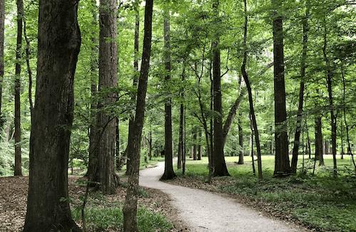 Jemison Park in Birminham AL