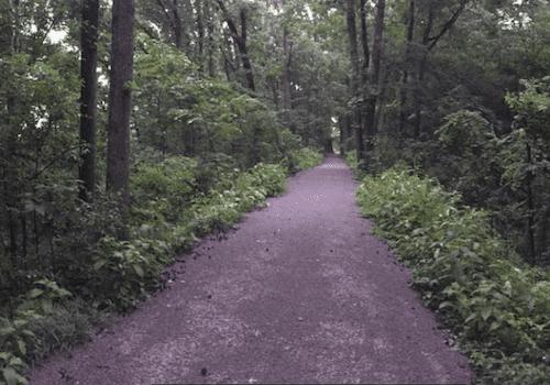 Vulcan Walking Trail in Birmingham Alabama