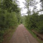 Trail through Blanchard Woods Park in Evans, GA