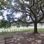 The Forsyth Park | Daffin Park Duo - Savannah GA