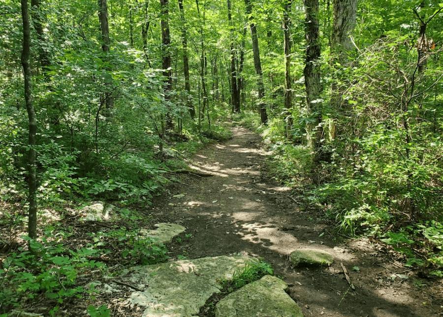 Wade Mountain Nature Preserve - Huntsville AL