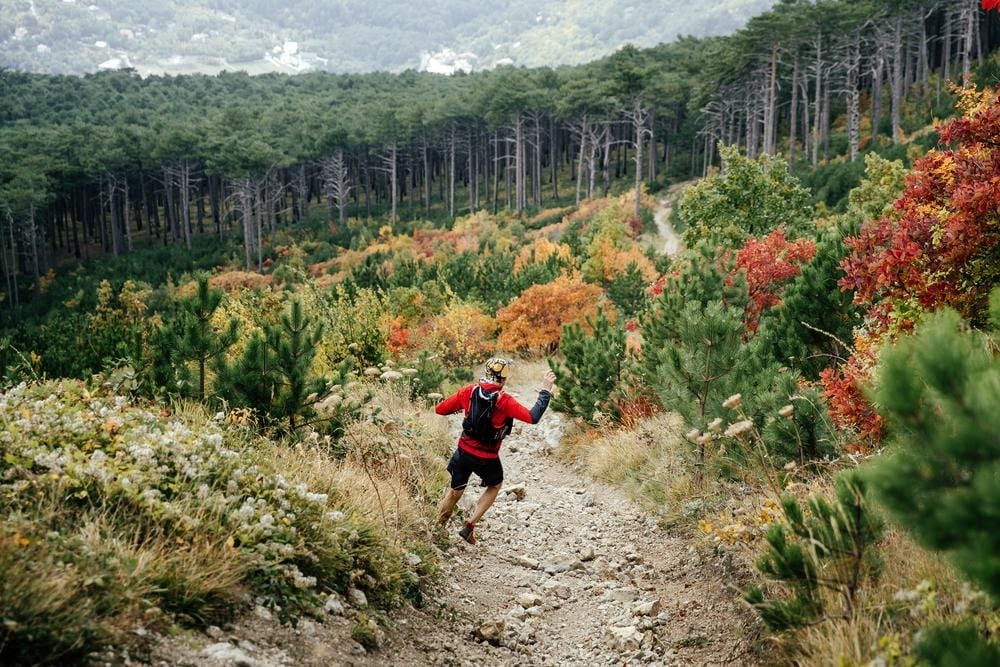 trail runner in the woods